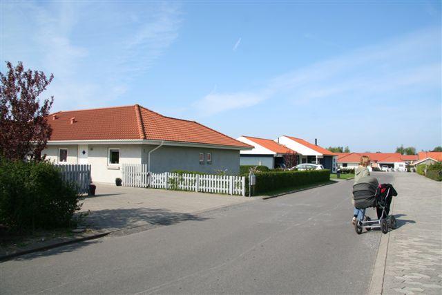 http://skytteengen-syd.dk/Billede%20501.jpg